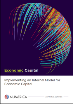 Implementing an Internal Model for Economic Capital